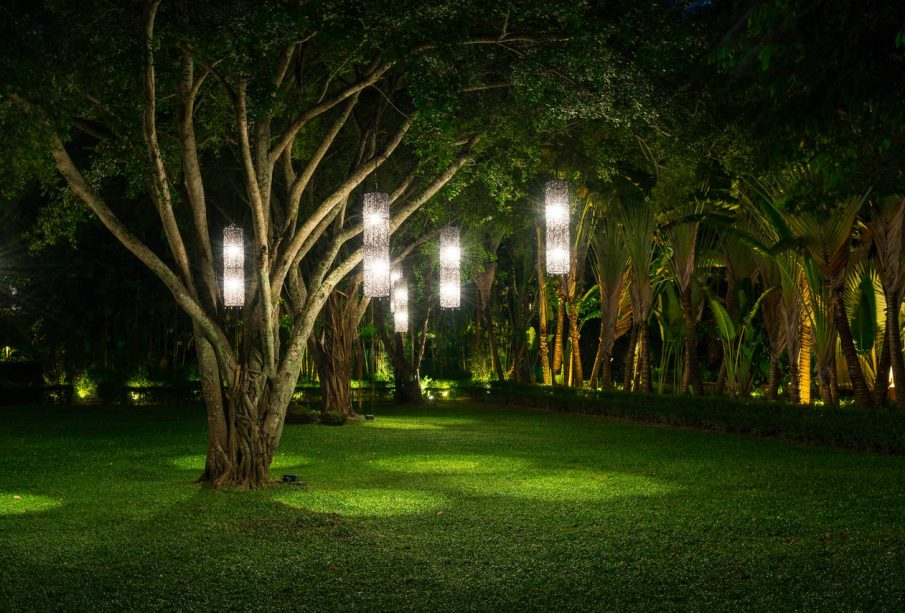 światła na drzewie w ogrodzie